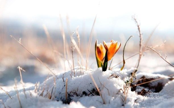 Что такое астрономическая весна?