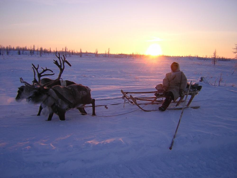 Три района Пермского края признаны территориями Крайнего Севера